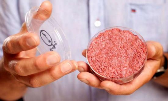 荷兰马斯特里赫特大学教授Mark Post手里拿着世界第一块实验室制作的牛肉 来源:phys.org
