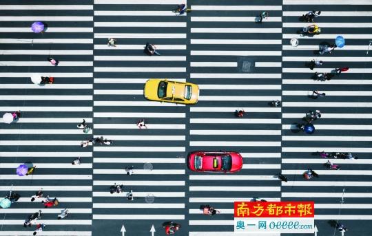 二中兄往年7月拍摄于广州北京路与中山路交界的斑马线。