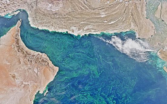 科学家发现阿拉伯海物化亡区的膨胀远远超出了预期。