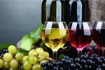 澳洲三洋葡萄酒业朱翔专访