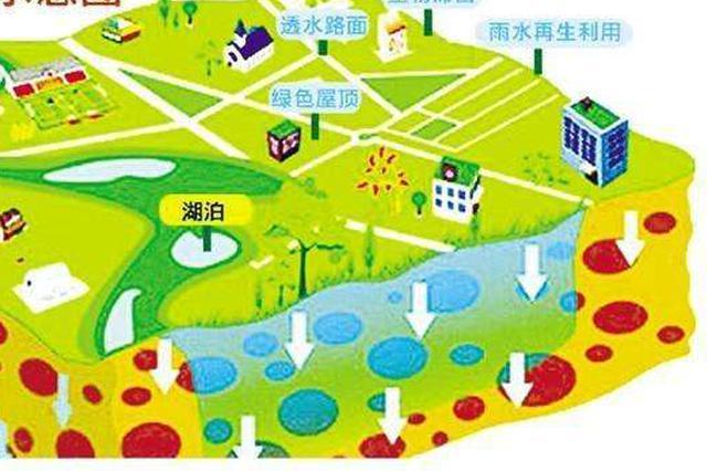 能有效应对大到暴雨 生态城海绵城市建设成效显著