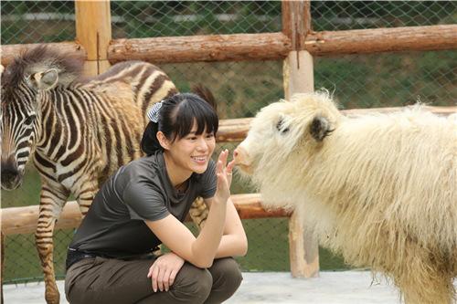 人与动物之性_《奇妙》秀出人文哲学价值阐述生命感悟|动物|奇妙的朋友|人文