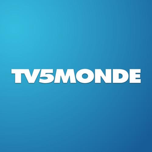 法国电视台遭极端组织黑客攻击