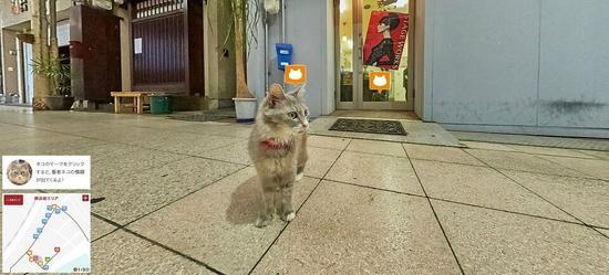 """吸引游客新招 日本广岛县观光课推""""猫咪街景"""""""