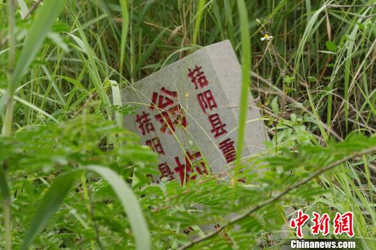 翁梅斋墓墓丘西侧的文保单位石碑深藏杂草中。 陈启任 摄