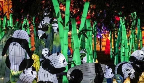 添亚克灯会上的自贡大熊猫灯(香港《南华早报》网站)