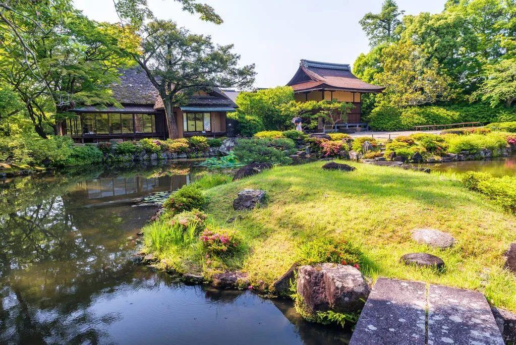 """疫情之下的境外旅游: """"失宠""""的何止日本奈良公园的鹿"""