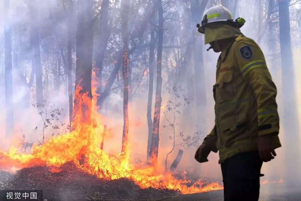 澳大利亚山火肆虐。图/视觉中国