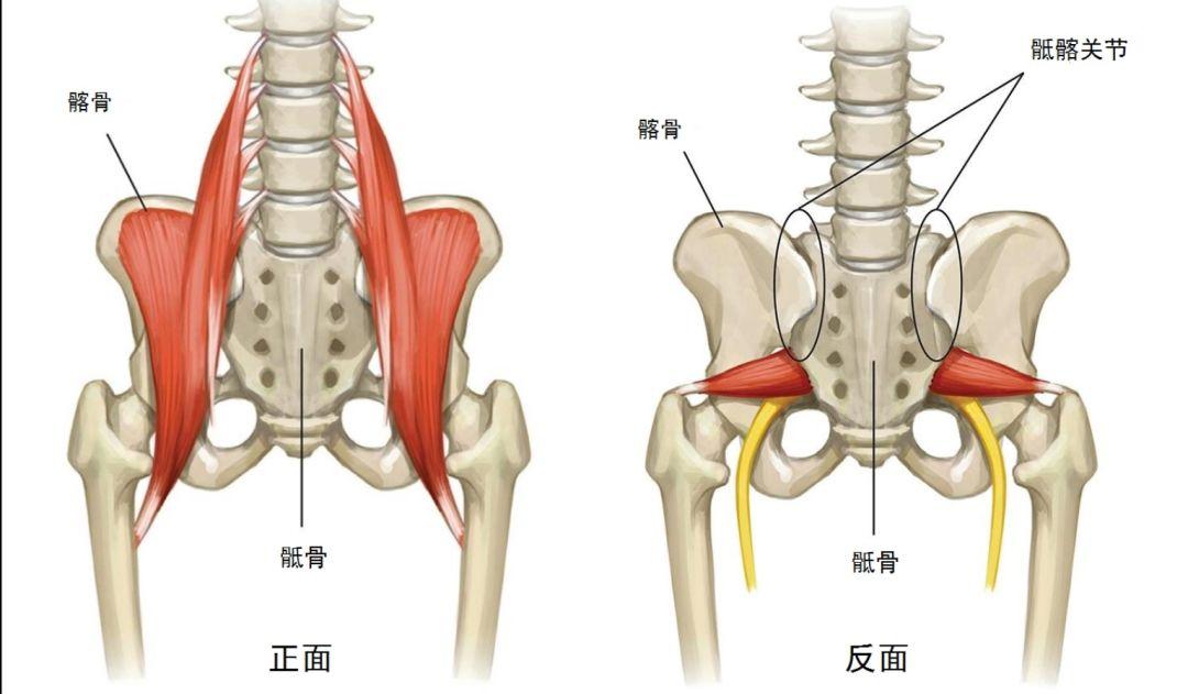 跑者后背疼痛怎么办? 这三个应对方法请知晓