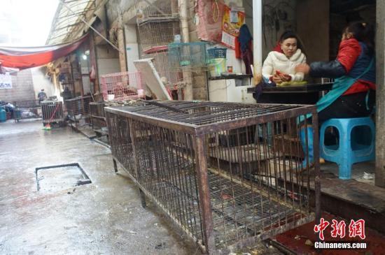 资料图:2015年2月11日,贵阳市发现1例人感染H7N9禽流感病例,部分活禽交易场所检测出H7N9禽流感病毒核酸呈阳性。图为休市后商贩们在火炉旁闲聊。 中新社发 贺俊怡 摄