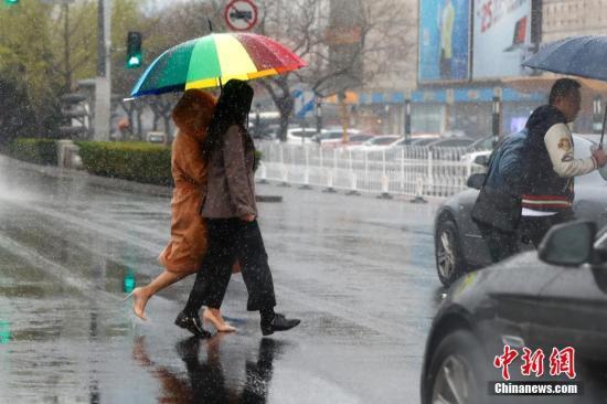 4月4日,雪花飘落京城。 中新社记者 富田 摄