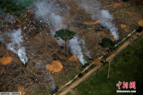 当地时间2019年9月17日,巴西波多韦柳,亚马孙雨林大火持续,浓烟滚滚。