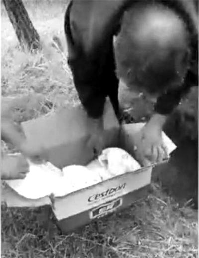 村民此前在山上挖出的被埋男婴北京青年报图