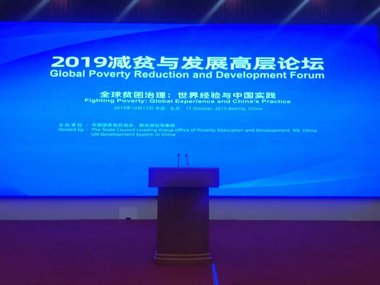 2019减贫与发展高层论坛现场。新京报记者 李傲 摄