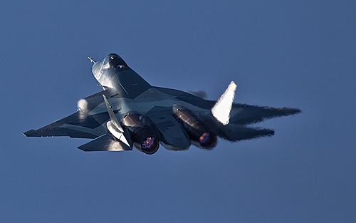 莫斯科航展上的俄罗斯T-50战机。新华社发(史小刚摄)