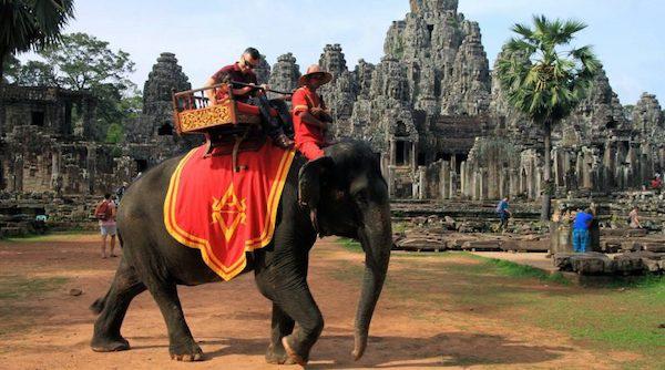 柬埔寨2020年将禁止在吴哥窟骑大象