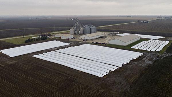 美国伊利诺伊州金格里奇农场,成排的大豆被包首来堆在田园上(图自彭博社)