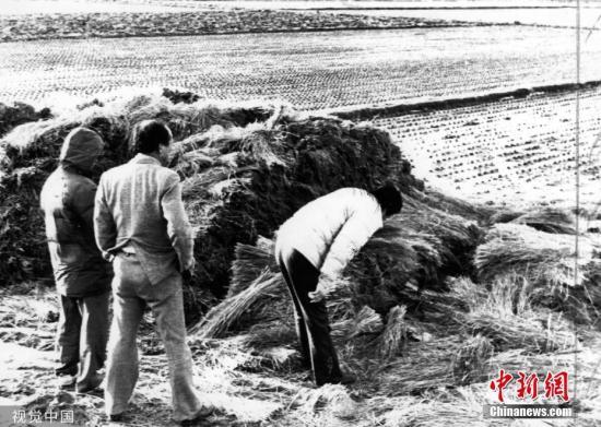 图为1987年,韩国警方在华城黄溪里的案发现场查看。图片来源:视觉中国