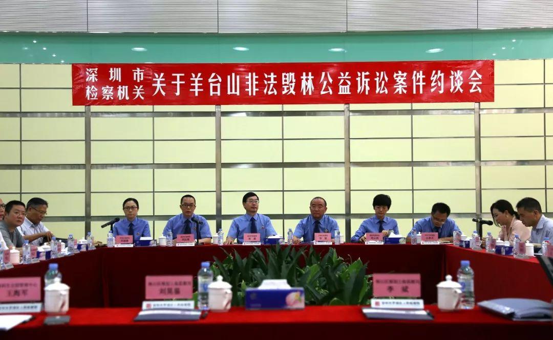 深圳羊台山毁林嫌犯被批捕:采伐面积17.4亩约砍七百棵树