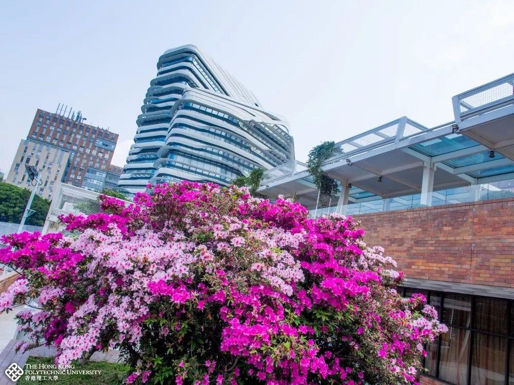香港理工大私塾园。图片来源:香港理工大学官网