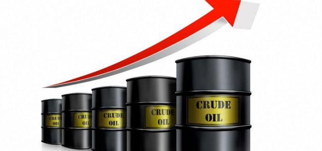 石油焦产品在沈阳正式上线