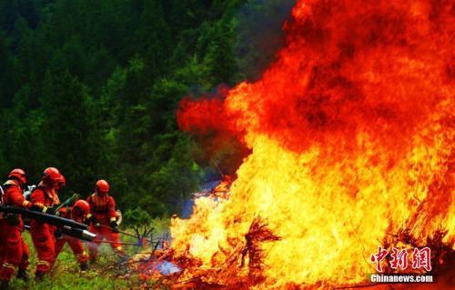 森林消防员使用风力灭火装备进行扑打作业。 裴海博 摄