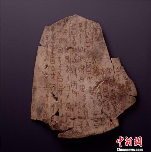 土方征涂朱卜骨刻辞,商,长22.5厘米,宽19厘米,中国国家博物馆藏。国家博物馆供图
