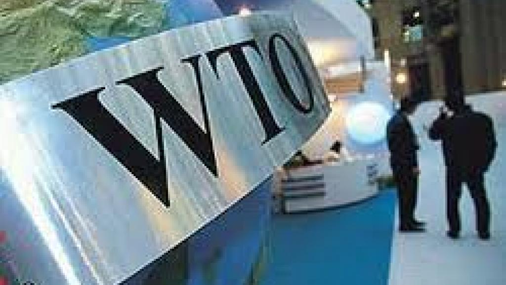 许多WTO成员代表都表达了对美国奉行单边主义和保护主义贸易政策的关切 担忧和批评