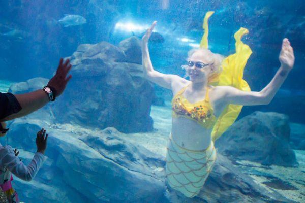 在长春,来自俄罗斯的时兴姑娘斯维塔,在海洋馆扮演水下美人鱼为生。(视觉中国)
