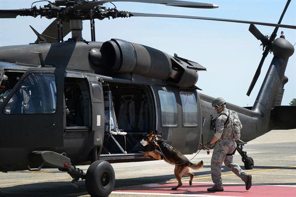"""资料图片:美军军犬准备搭乘""""黑鹰""""直升机。(美陆军官网)"""