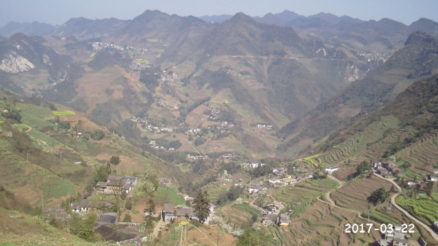 茶蔚村村貌 图源:村网通