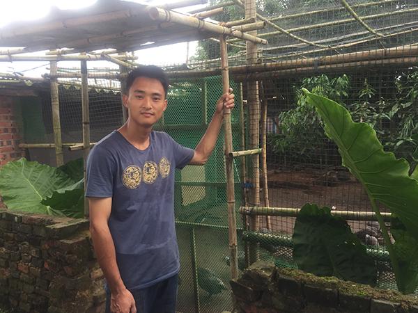 22岁的伍枫想复制张柏铭养鸡的成功,多次尝试养鸡,都失败了,自嘲像猪一样蠢。