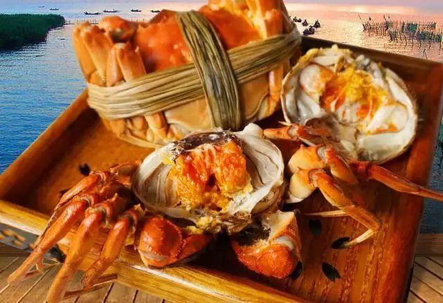 蒸好的螃蟹如何保存_蒸好的螃蟹吃不完的话,怎么保存?-蒸好的螃蟹如何保存