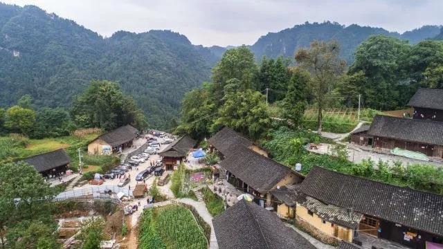 十八洞村_2013年,代家发流转了五里村1800亩土地,计划进行种粮,果树,油茶多