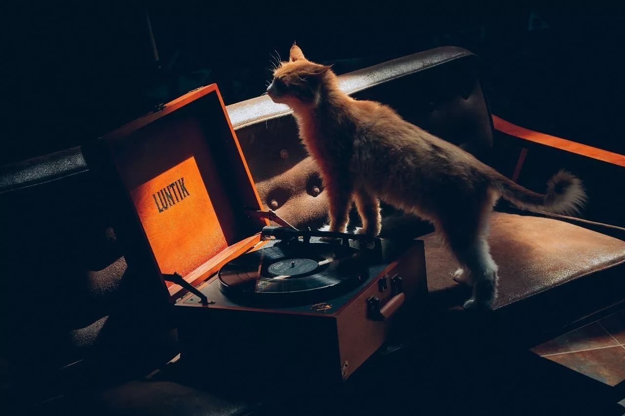 神雕乱lun_② 莱蒎黑胶唱机 luntic