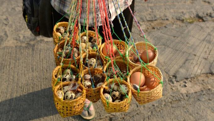盛有�g��蛋和�u蛋的���@。