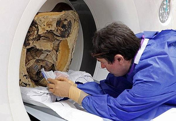 """科学家对佛像""""真身""""的骨头进走采样 新华网 图"""