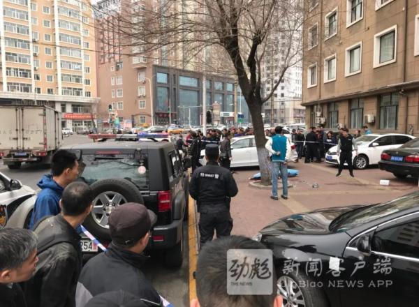 黑龙江晨报微信公众号 图