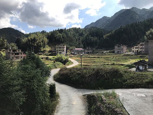 阳春村一景 澎湃音信记者 沈文迪 摄