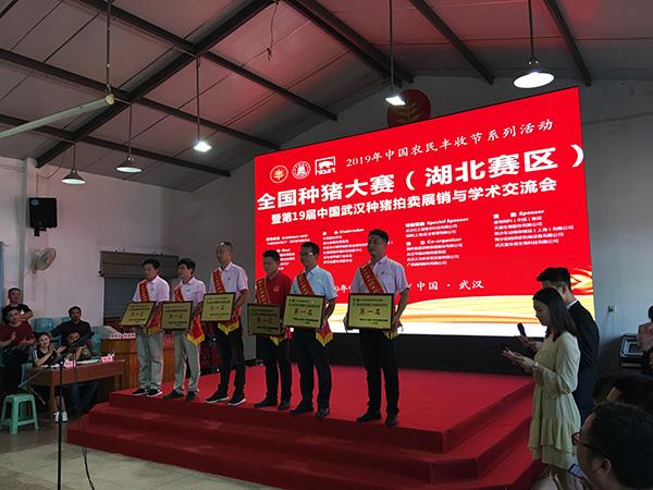 """人民网评:独特的""""政治操作系统""""让中国不断成功"""