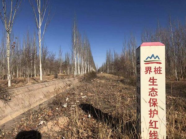 污染场地邻近生态保护区。澎湃新闻记者 陈雷柱 图
