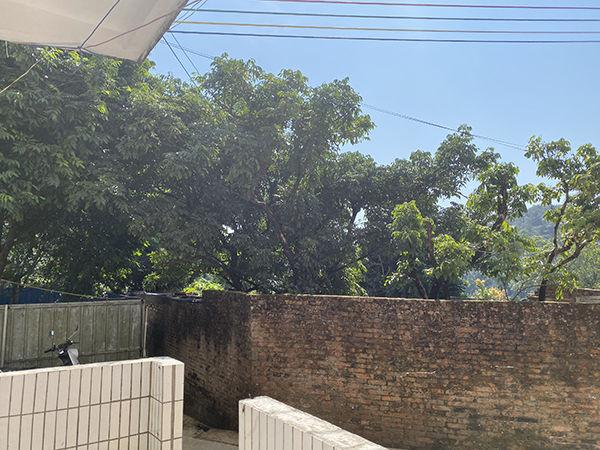 练鸿南家屋后的果园,多种植百香果和火龙果。滂沱消息记者 李思文 摄
