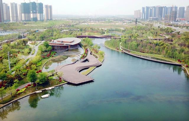 """本周六上午,一起去河西城市生態公園""""為水而行""""(圖文)圖片"""