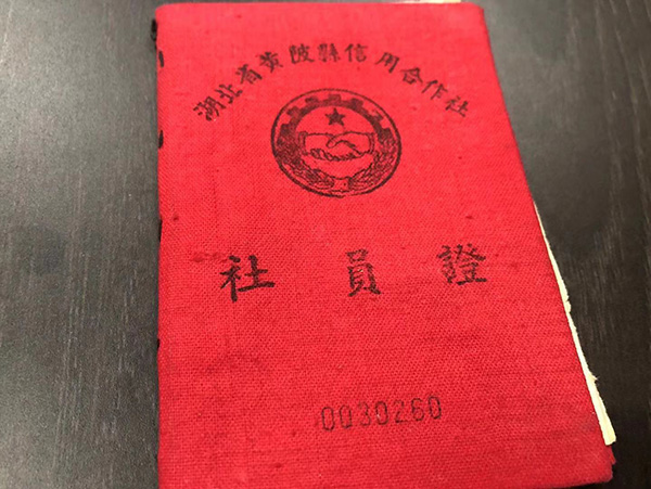 医牛健康资讯网