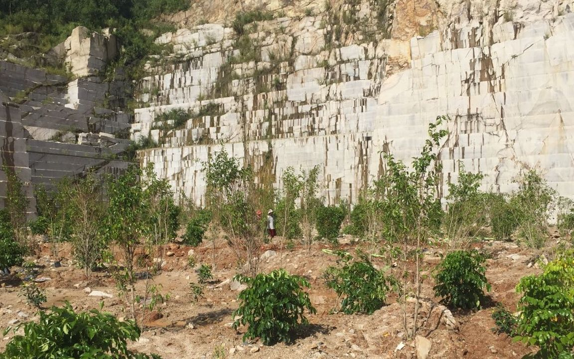 蔡坑矿区,工人正在进行复绿工作。 新京报记者 张胜坡 摄