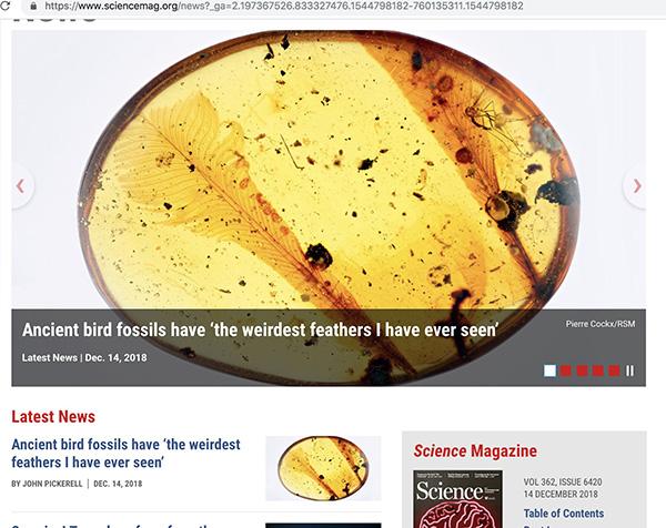 Science网站news头条报道该新发现。