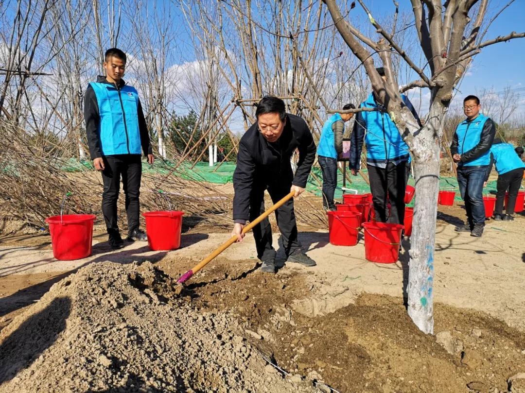 181名部级领导在北京朝阳种树?这里有一波现场图