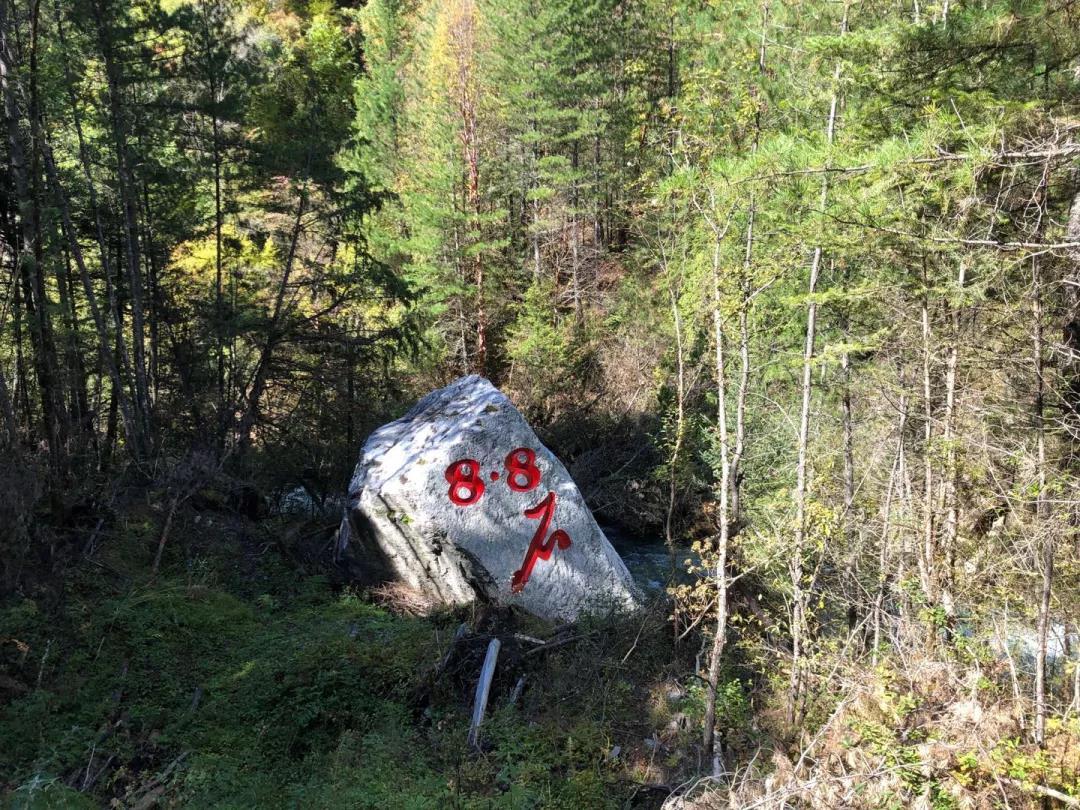地震后,从山顶滚落的巨石。新京报记者向凯 摄