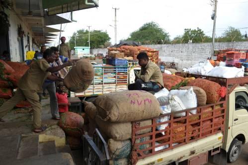 图为在印度海得拉巴,工人们将成包的蔬菜装车。新华社/法新