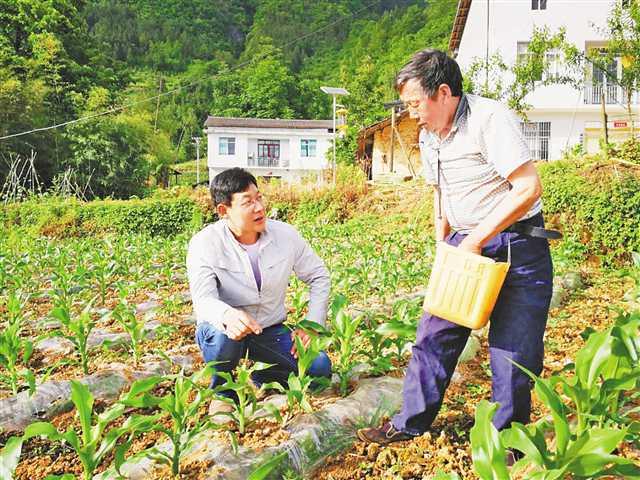 http://www.bvwet.club/shehuiwanxiang/324915.html